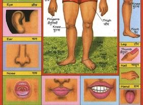 Verkeerde mond, verkeerde neus